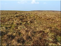 NS4379 : Ancient trackway by Lairich Rig