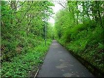 NS5574 : Milngavie, old railway track by Robert Murray