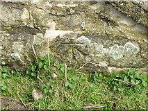NZ0200 : Bench Mark near Watson House by Maigheach-gheal
