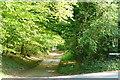 SP8400 : Coleheath Bottom by Graham Horn