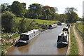 SJ8458 : Macclesfield Canal by Trevor Harris