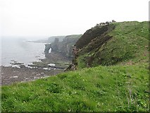 NT9955 : Berwickshire Coast Path by Richard Webb