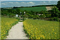 TQ5365 : Footpath to Eynsford. Kent by Peter Trimming