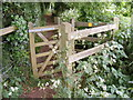 TM3055 : Kissing Gate on the footpath to Church Terrace by Adrian Cable