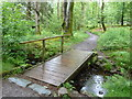 NY2721 : Footbridge in Great Wood by Graham Hogg