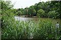 TQ2373 : Kingsmere, Putney Heath by Bill Boaden