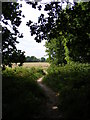 TM2446 : Footpath to the A12 Martlesham Bypass over Martlesham Heath by Adrian Cable