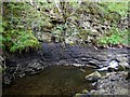 NY9038 : Crag on bend of Middleton Burn by Andrew Curtis