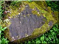 NY9039 : Fossilised ripples in sandstone boulder, Middlehope Burn by Andrew Curtis
