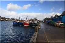NR8668 : View towards Tarbert Fish Quay by Michael Jagger
