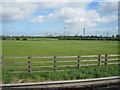 SJ4473 : Fields looking towards Stanlow from M56 by John Firth