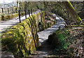 SD9806 : Spring Brow bridge, Ladcastle, Dobcross by Michael Fox