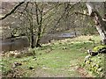 NM9762 : River Gour by Richard Webb