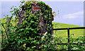 J2765 : Gatepost near Lambeg by Albert Bridge