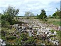 M1679 : Limestone pavement at Glasgort by Oliver Dixon
