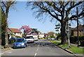 TQ3666 : Woodmere Avenue by N Chadwick