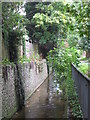 TQ4172 : The Quaggy River between Marvels Lane and Chinbrook Road, SE12 (3) by Mike Quinn