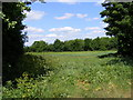 TM3761 : Field entrance off the Bridleway to Deadman's Lane by Geographer