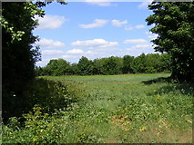 TM3761 : Field entrance off the Bridleway to Deadman's Lane by Adrian Cable