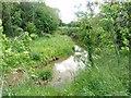 SP0238 : River Isbourne,Sedgeberrow by Liz Stone