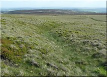 SE0030 : Sunken track on High Brown Knoll, Wadsworth by Humphrey Bolton