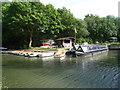 SU7451 : Galleon Marine - Basingstoke Canal by Sandy B