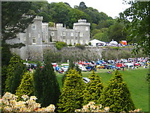 SW9741 : Caerhays Castle by Rod Allday