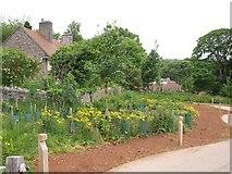 ST5071 : Approaching Home Farm, Tyntesfield by Derek Harper