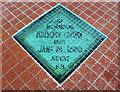 J3372 : The Elmwood Hall, Belfast (13) by Albert Bridge