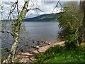NH5328 : View across Loch Ness by Robin Drayton