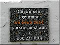 B8116 : Wall plaque, Loughanure by Kenneth  Allen