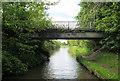 SJ6871 : Bridge 181 by Mike Todd