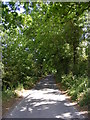 TM3365 : Low Road,Bruisyard by Geographer
