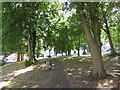 TQ8109 : Cornwallis Gardens by Oast House Archive