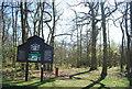 TQ3764 : Spring Park by N Chadwick