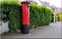 J3672 : Pillar box, Belfast by Albert Bridge