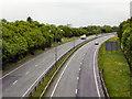 SH5372 : Eastbound A55 from Ffordd Penmynydd by David Dixon
