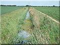 TL3287 : Dike off Ramsey Hollow Drove by Richard Humphrey