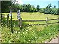 TQ1452 : Chalk Grassland, Bagden Farm by Colin Smith