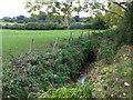 TQ4468 : The Kyd Brook south of Tongs Farm (2) by Mike Quinn