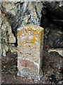 SX4157 : Mystery stone marker by Kate Jewell