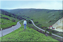 SY9282 : Stonehill Down from Ridgeway Hill, 1986 by Robin Webster