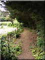 TM3050 : Footpath to the A1152 Orford Road by Adrian Cable