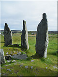NB2133 : Three of the Calanais Stones by Anne Burgess