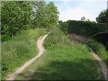 SU7451 : Path by Colt Hill bridge by Sandy B