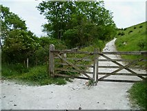 TQ2813 : Gate on track in Wellcombe Bottom by Shazz