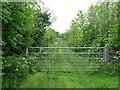 NU1620 : Green lane, South Charlton by Richard Webb
