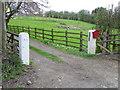 NZ4111 : Driveway, Yarm by Maigheach-gheal