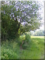 TM2863 : Footpath to New Road (U2521) by Adrian Cable