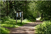 TQ2353 : Public Bridleway at Mogador, Surrey by Peter Trimming